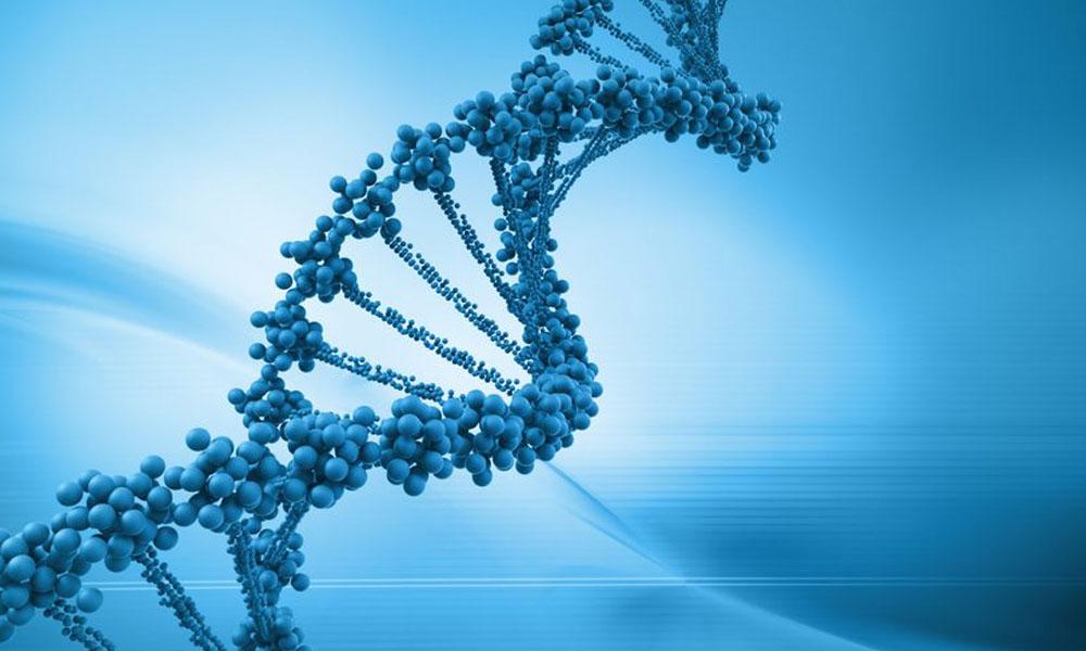 biotechnology stock price