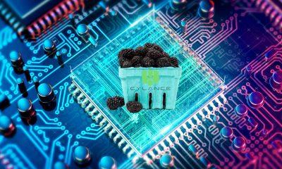 stock_price_blackberry