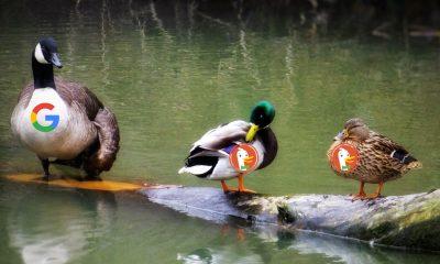 stock_price_duckduckgo
