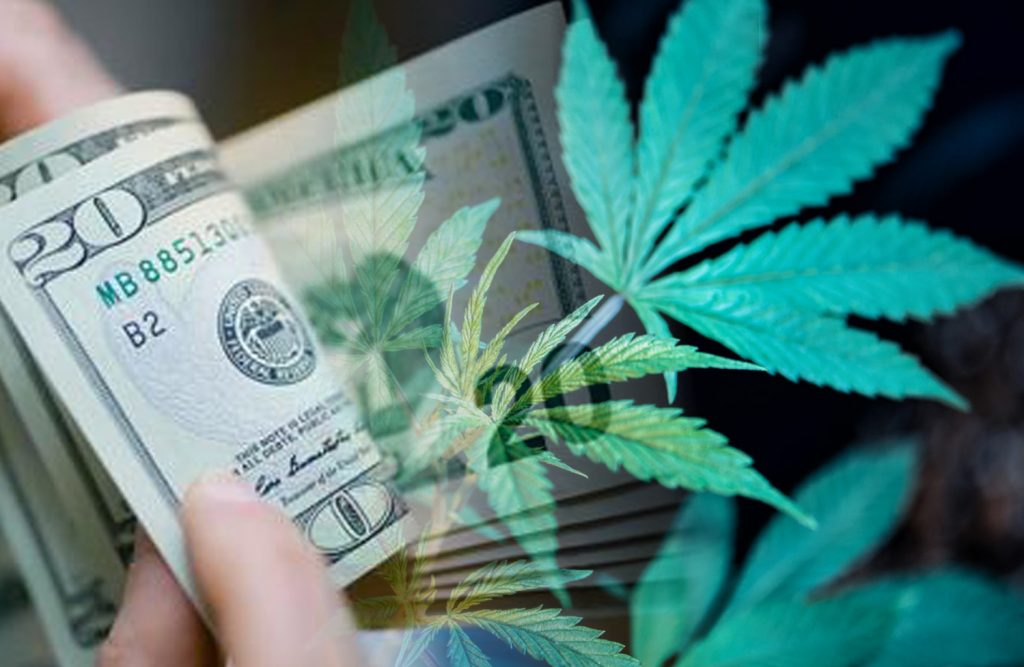 cannabis stock to watch